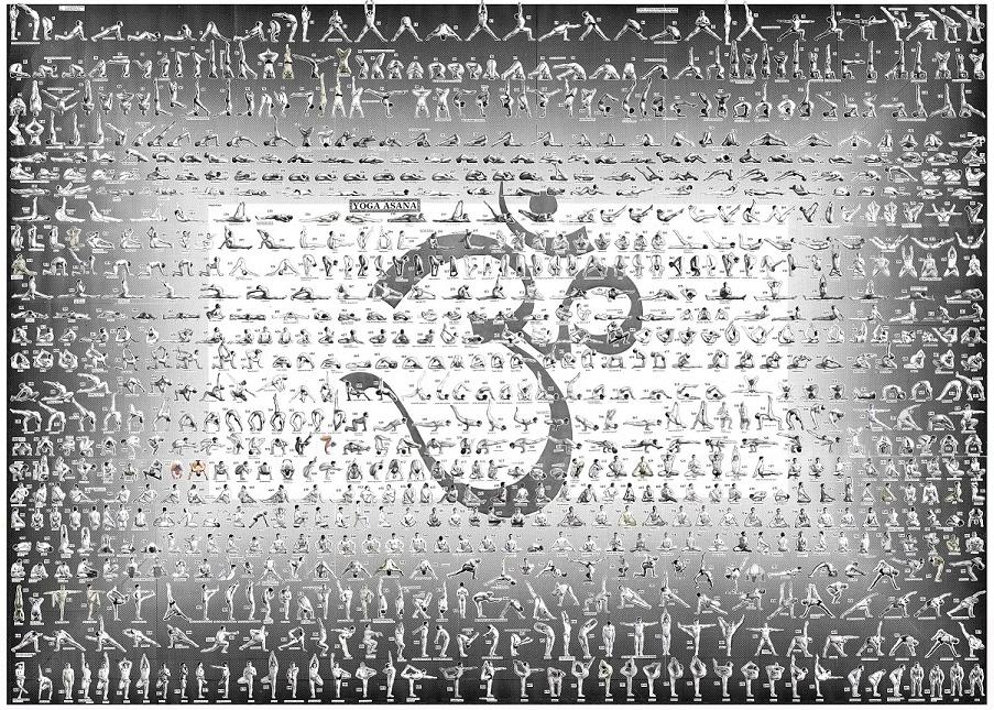Dharma Master Yoga Chart / Poster